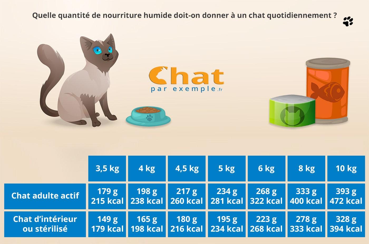 Combien de pâtée pour chat par jour